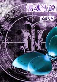 紫魂传说封面