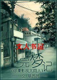 完梦记(综影综漫大同人)封面