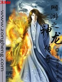 网游之神龙传封面
